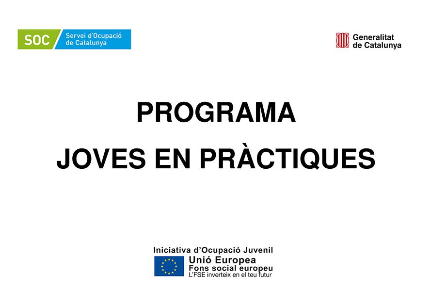 Programa de Joves en Pràctiques, 2018